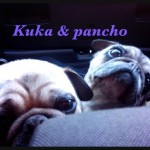3. Kuka y Pancho