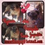 4. Kyran adoptado