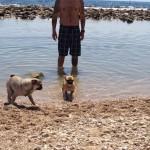 7. En la playa con su papi y su hermano