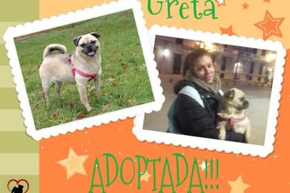 Greta adoptada