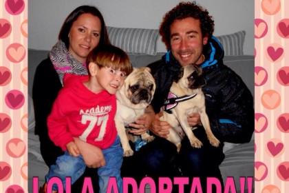 Lola adoptada (23)
