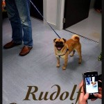 Rudolf (11)