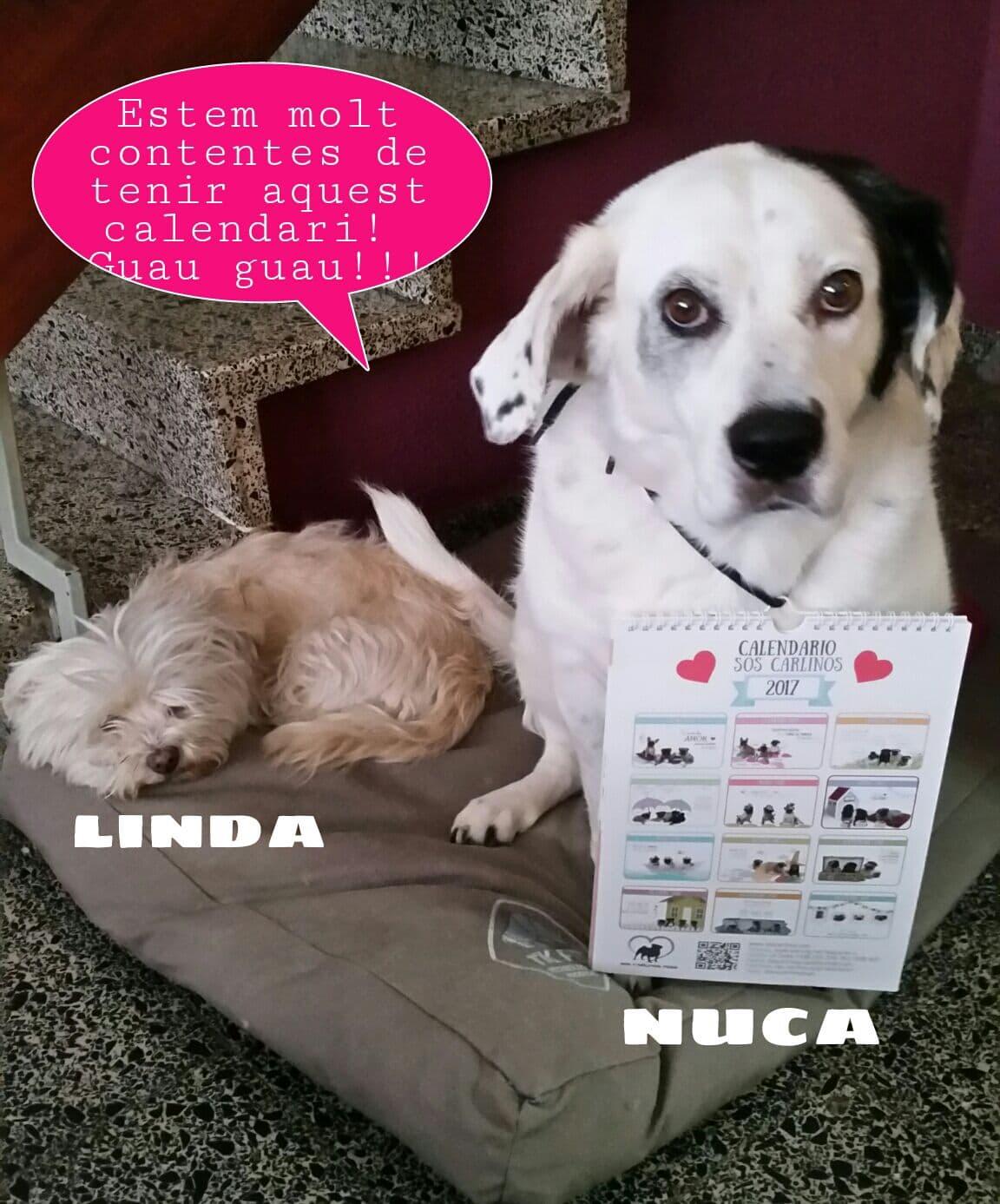 Linda & Nuca