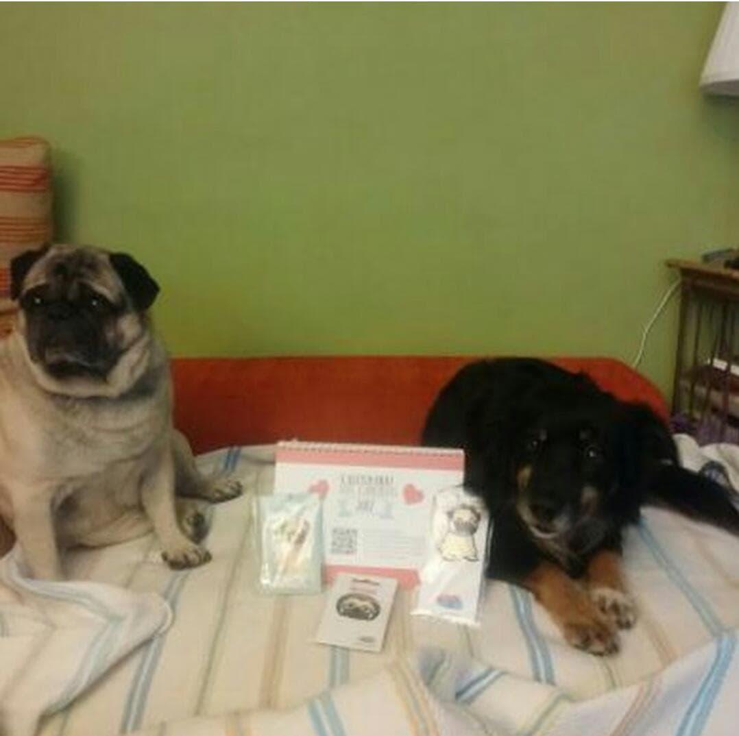 Otto & Churchill